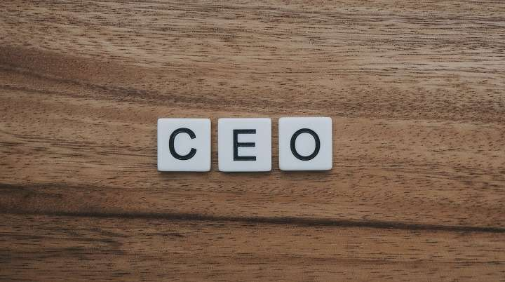CEO Meaning in Hindi